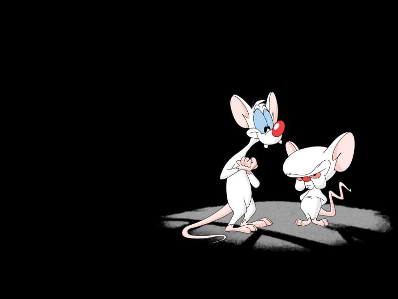 Pinky-Cerebro-Cinema-Gizmo